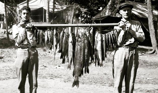 1914 – What a haul!